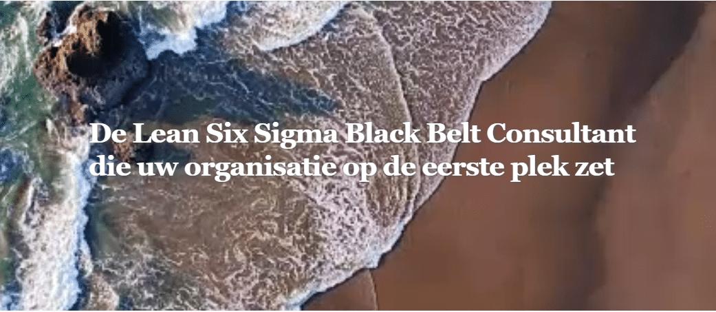 Lean Six Sigma Consultant Procesmanagement